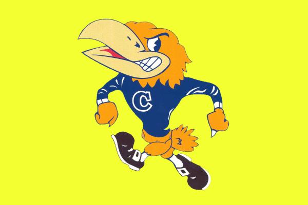 Crestwood Falcon Logo