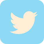 Image of the Twitter icon - white bird