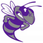Deep Creek High logo hornet