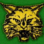 Great Bridge High logo wildcat