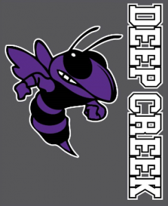 Spirit wear hornet on gray