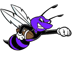 image of hornet with football