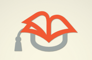 a cap in the shape of an open book in orange and gray
