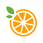 orange slice in half with two green leaves