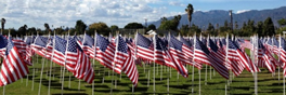 field of valor picture- flags displayed