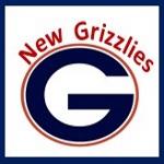 New Grizzlies G icon
