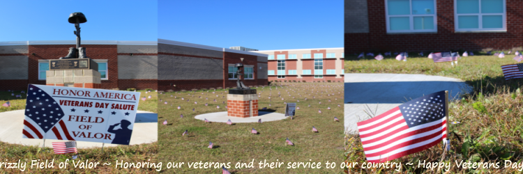 Field of valor honoring our verterans for serving our country. Happy Veterans Day banner