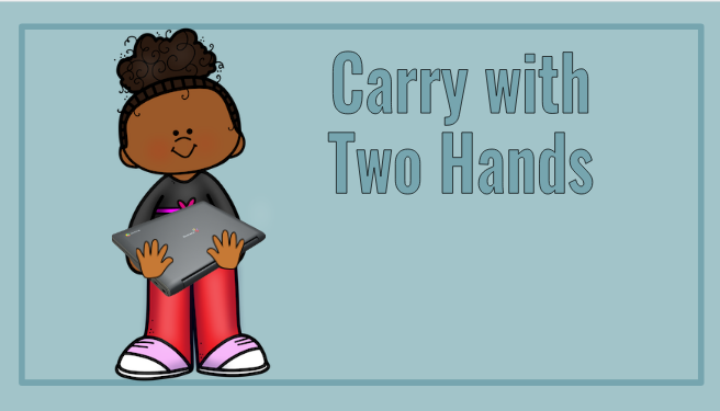 Carry with Two Hands