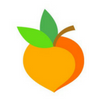 Orange peach with green leaves