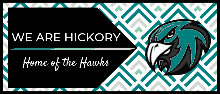 We are hickory Home of the Hawks teal gray background with teal hawk head