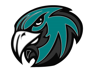 Teal gray and black hawk head logo