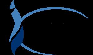 Chesapeake Public Schools Logo - Inspire, engage, empower Chesapeake Public Schools