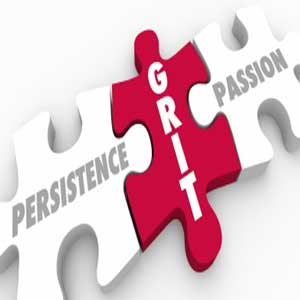 persistence grit passion