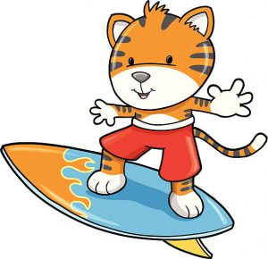 surfing tiger