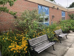 Benches and flower garden