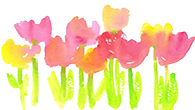 Tulips which represent administrative support professionals