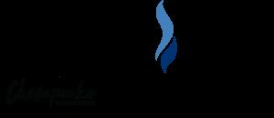 Chesapeake Public Schools Equity Council